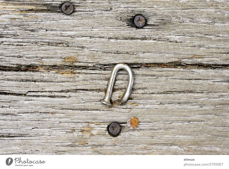 It was Friday and so he simply left the crooked nail to its fate. Since then, he's been living on a wooden plank. Nail Warped Wood Wood plank individual