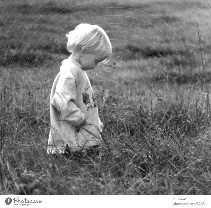 sad? Child Grief Meadow Blonde Back-light Think Dreamily Grass Sadness Loneliness Black & white photo Boy (child) Hair and hairstyles
