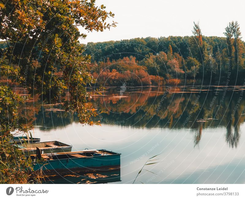 Reflection of trees in the autumnal lake with small, old boats. Autumn autumnally discoloured Lake Lakeside Reflection in the water wooden boat Fishing boat