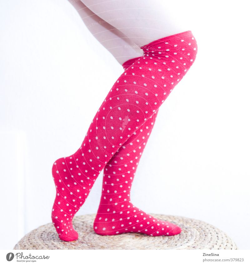 . Feminine Legs 1 Human being 18 - 30 years Youth (Young adults) Adults Stockings Red White Colour photo Studio shot