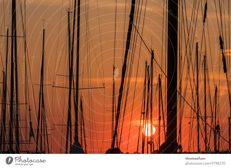 Sunset in the harbour with sailboats, masts marina Harbour Sky Rigging Watercraft Navigation Sailing Pole Ocean Clouds tranquillity colored Moody hustled