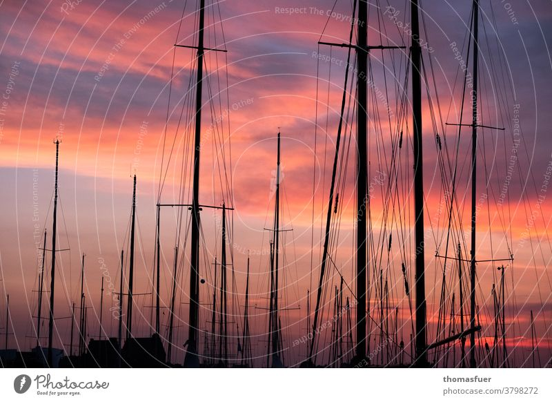 Sailing boats, masts, in front of red clouds in the harbour Harbour marina Watercraft Rigging sailboats Sky Navigation Vacation & Travel Ocean Pole Clouds