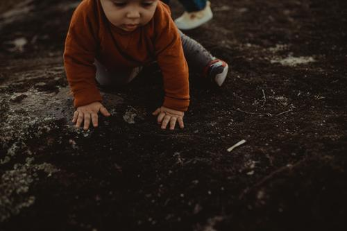 Toddler playing outdoors Autumn Autumnal colours Authentic Playing Child Early fall Exterior shot Day Nature Leaf Colour photo Autumn leaves 1 - 3 years