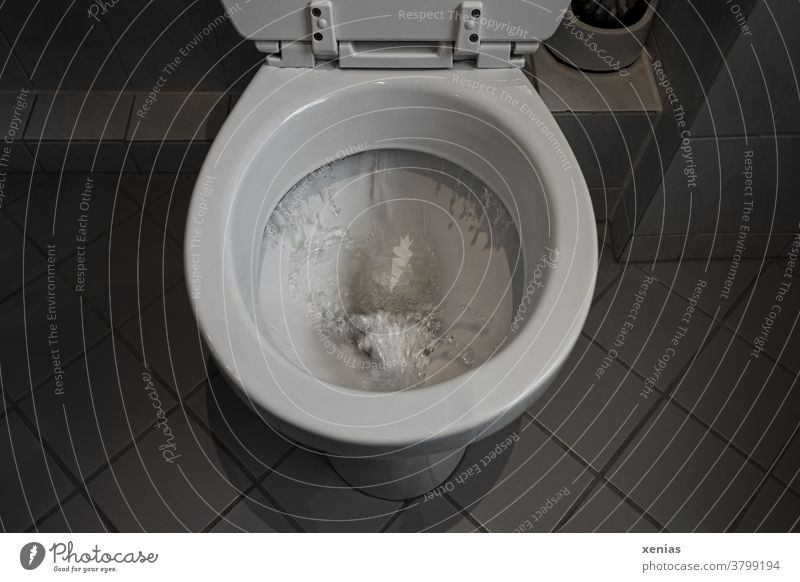 Wave in the toilet - Precious drinking water gushes into the canal via the toilet flush Toilet john Flush Drinking water bathroom Tile Bathroom Water