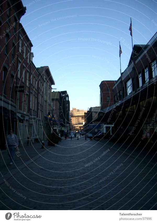 House (Residential Structure) Street Americas Cobblestones New York City Paving stone Blue sky Housefront Cloudless sky Vanishing point Covered market Clear sky