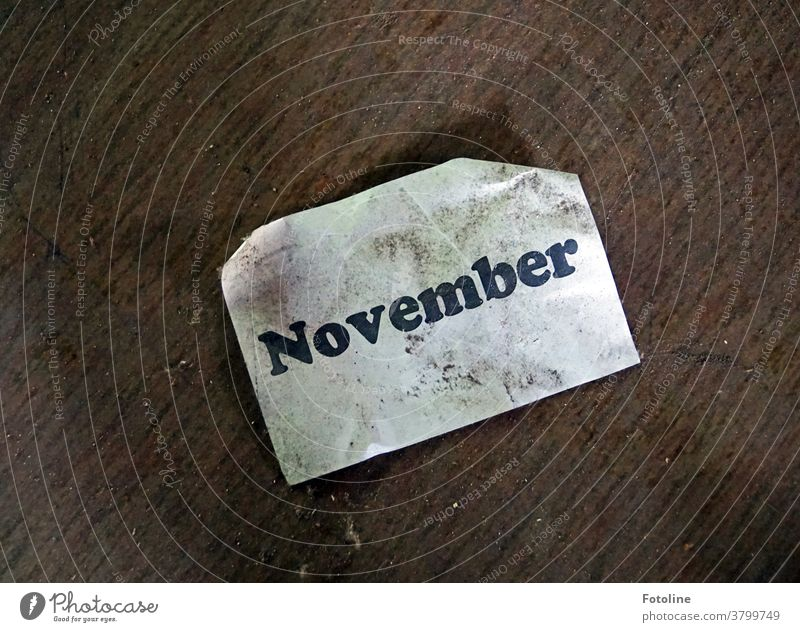 Hello November - or there is a note on the floor with the words November Month Piece of paper Leaf writing Letters (alphabet) Characters Word Text Deserted