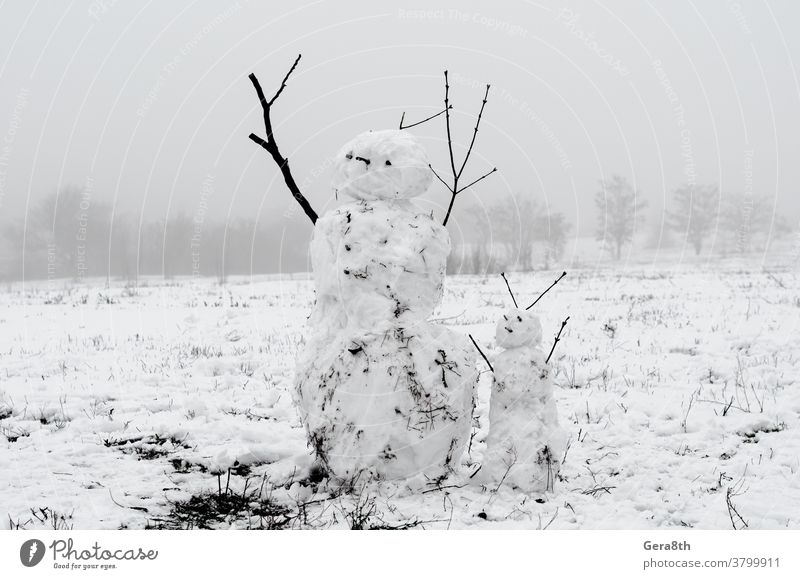 creepy snowmen from dirty snow on the background of trees and fog a snowman branches couple of snowmen dirty snowman figures hard snowman nature snow figure