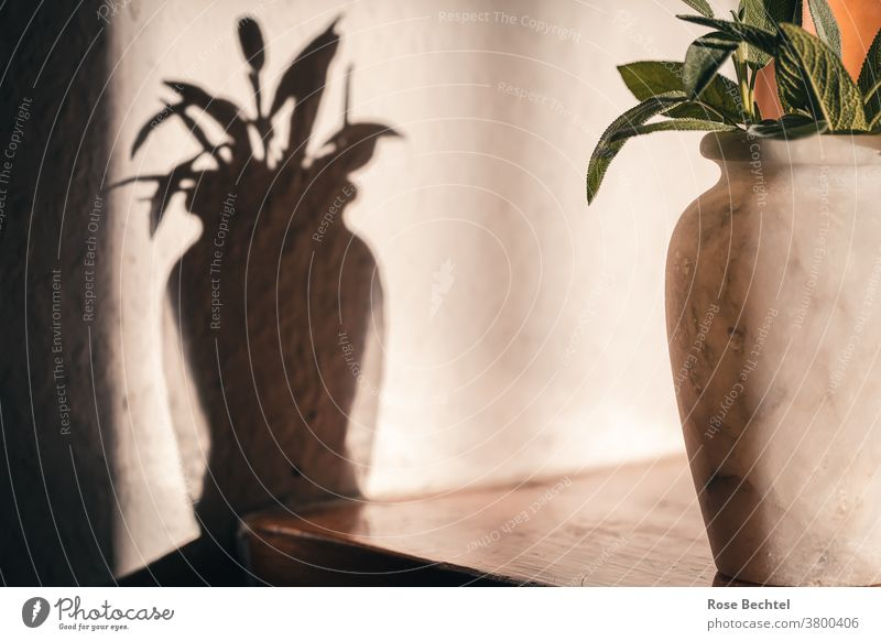 Marble vase with sage leaves Still Life Vase Shadow Sage Colour photo Deserted Interior shot Bouquet Style Decoration Lifestyle Living or residing Living room