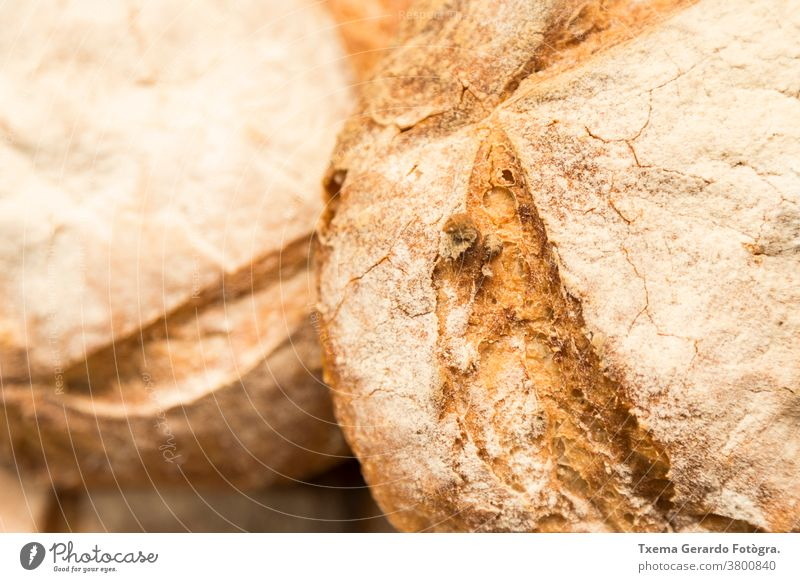 Detail of artisan gluten free loaf of bread traditional bake organic sunflower seeds flour wheat cereal rustic grain food breakfast nutrition french italian