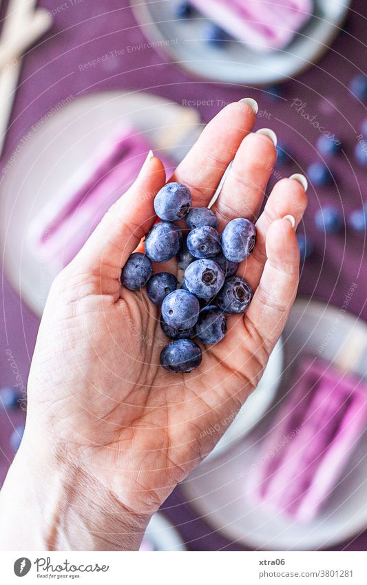 blueberries Blueberry Berries Hand Ice ice on a stick Fruit Food Food photograph Refreshment Healthy Eating Delicious luscious fruit Colour photo Fresh