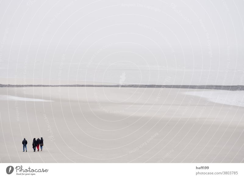 People at low tide on the beach Group Walk along the tideland Mud flats Winter Autumn Human being Crowd of people North Sea Movement Dry Exceptional Bright