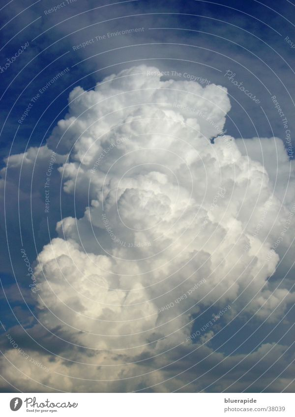 Sky White Blue Clouds Cold Bright Large Soft Threat Cumulus Airy Absorbent cotton