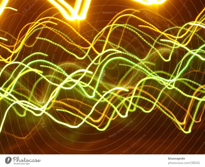 light show Light Long exposure Bright Multicoloured Curve Wild animal Movement