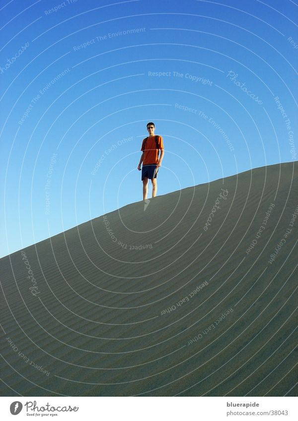 Standing on the dune Small Man Sky Blue Sand Beach dune Desert Human being Above Looking Vantage point