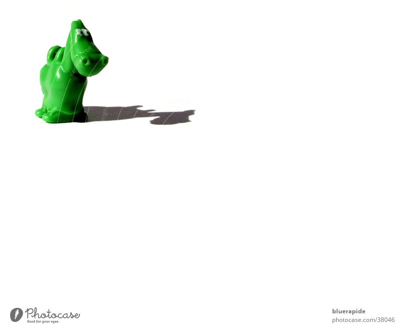 A horse stands in nothingness and grins Green Alert Cute Sincere White Horse Friendliness Happiness Bilious green Flashy Drop shadow Looking Stand Small Animal