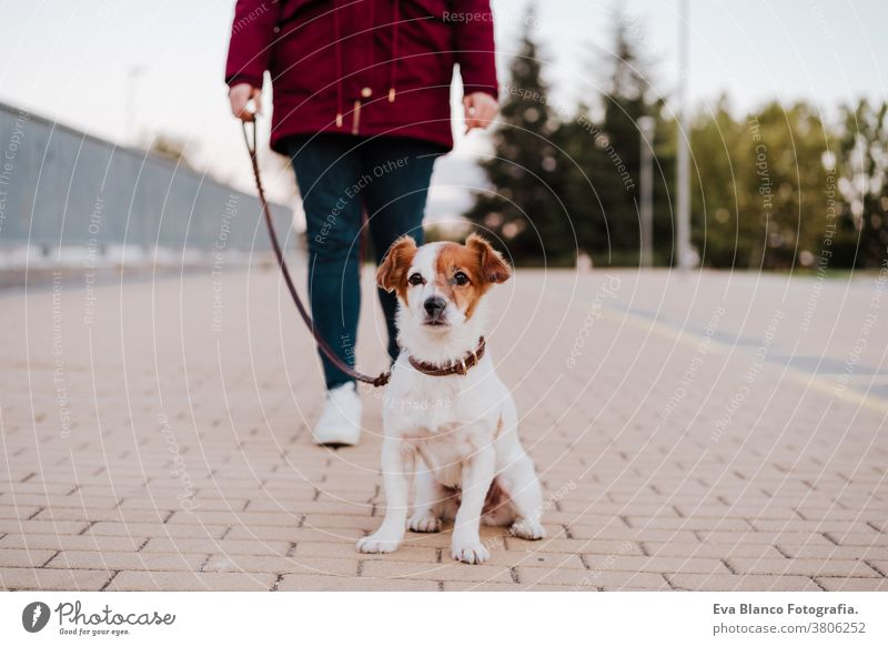 woman at the city walking with her adorable jack russell dog. Lifestyle outdoors allergic autumn care caucasian copy space corona coughing danger disease