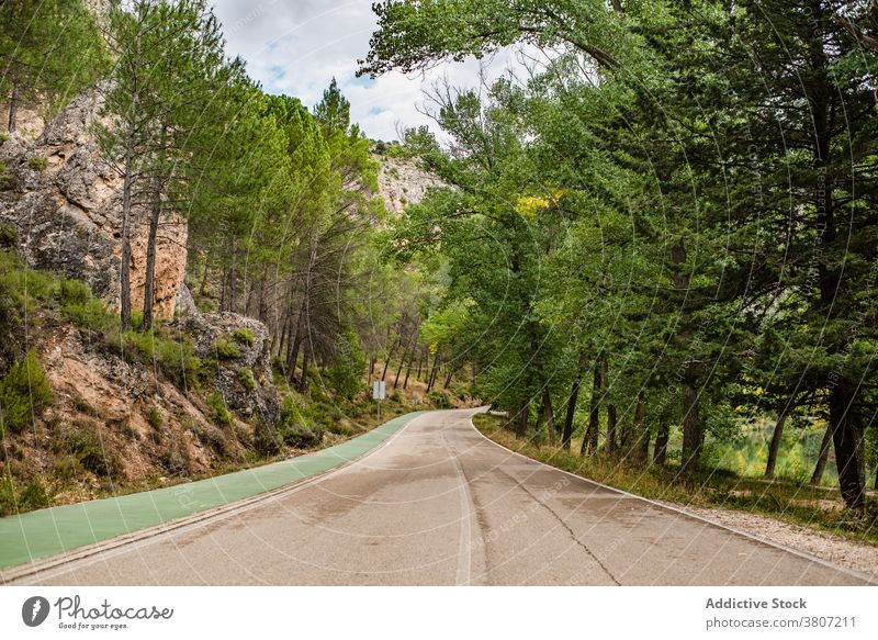 Winding roadway through mountainous forest empty nature country asphalt summer travel spain cuenca journey countryside landscape trip route path tree foliage