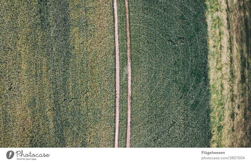from top 1 Above aerial photograph drones droning UAV view Field Margin of a field Working in the fields Tracks Tracking track search Lanes & trails Grain