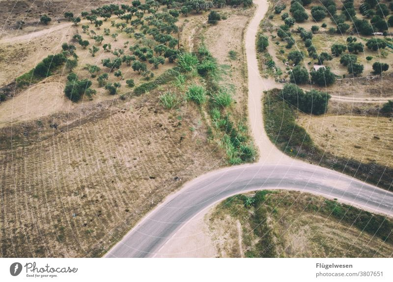From above 5 Above aerial photograph drones droning UAV view Field Margin of a field Working in the fields Tracks Tracking track search Lanes & trails Grain