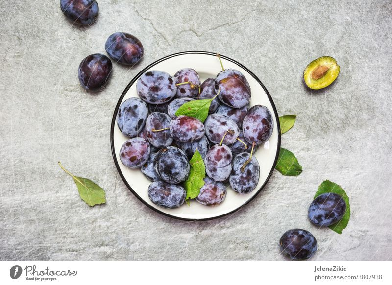 Ripe blue plums on a plate ripe fruit organic sweet food healthy freshness autumn purple delicious vegetarian raw nature summer dessert agriculture juicy