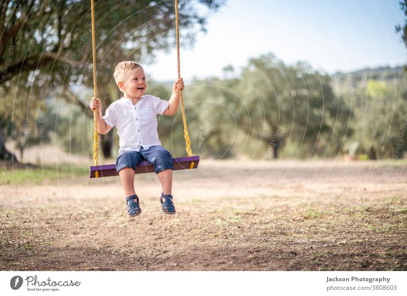 Cute blond toddler on the swing boy cute happy enjoy amusement preschooler children sitting summertime leisure freedom laughing male baby day garden smile