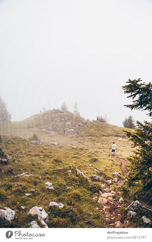 Hiking in the fog above the Achensee in Tirol in Austria Alps Back-light Tyrol Lake Achensee Wanderlust Hiking trip Class outing nature conservation Endurance