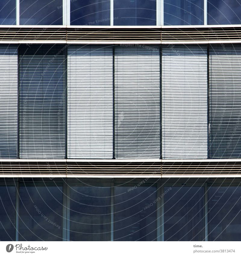 lockdown | corona thoughts Facade Window Wall (building) House (Residential Structure) Venetian blinds Closed Blue silver reflection Parallel Mysterious
