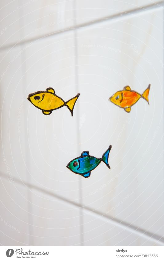 small colourful fish, painted on a glass wall in the bathroom, white tiles in the background Glass wall Funny Positive creatively variegated Decoration