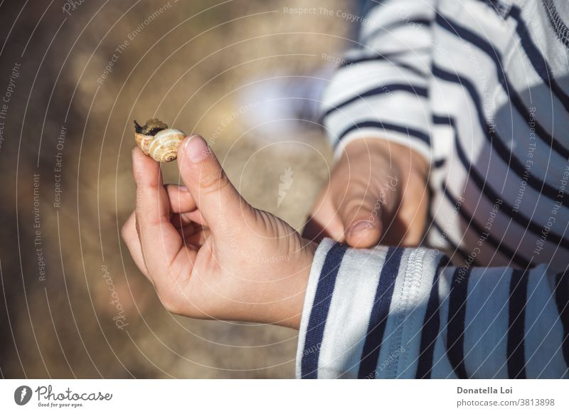 Snail in the child hands animal autumn bokeh cute differential focus fall holding horizontal little little boy nature one outdoors person slow slowly small