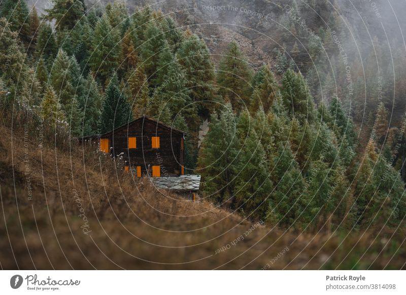 Swiss chalet in the mountains with orange shutters with pine trees in the background Pine cabin Chalet Switzerland Valais Zermatt Suisse Romande Geneva Zurich