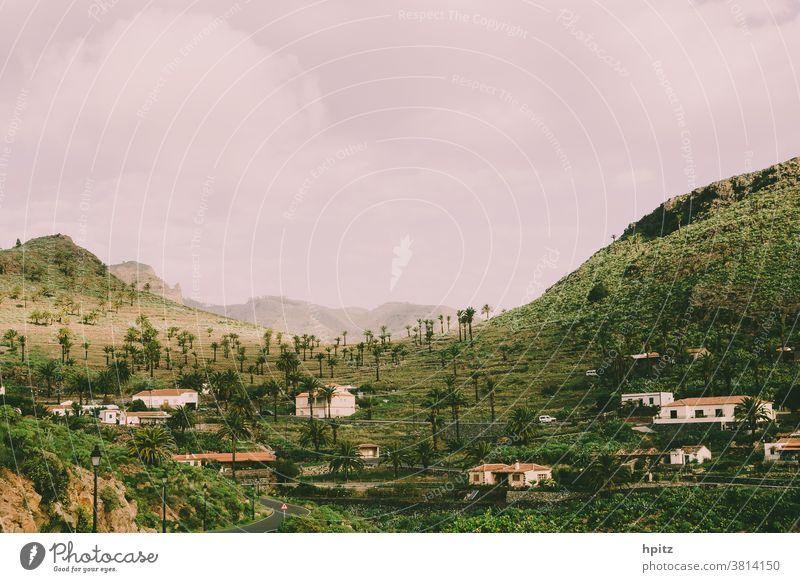 Targa - La Gomera Landscape Colour photo mountains palms Exterior shot Nature Green Wanderlust Island Hiking Canaries