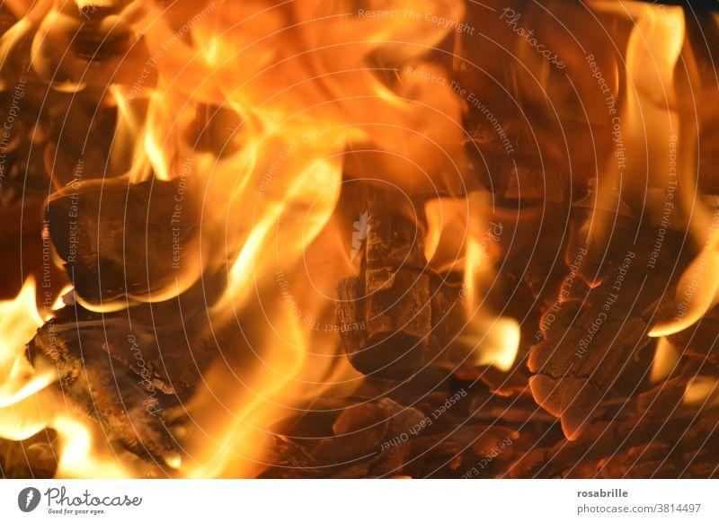 Fire | Trash 2020 Embers campfire Hot Burn Near Dangerous peril incinerate sb./sth. Flame blaze Wood Coal char charred Warmth warm ardor Heat heat Energy