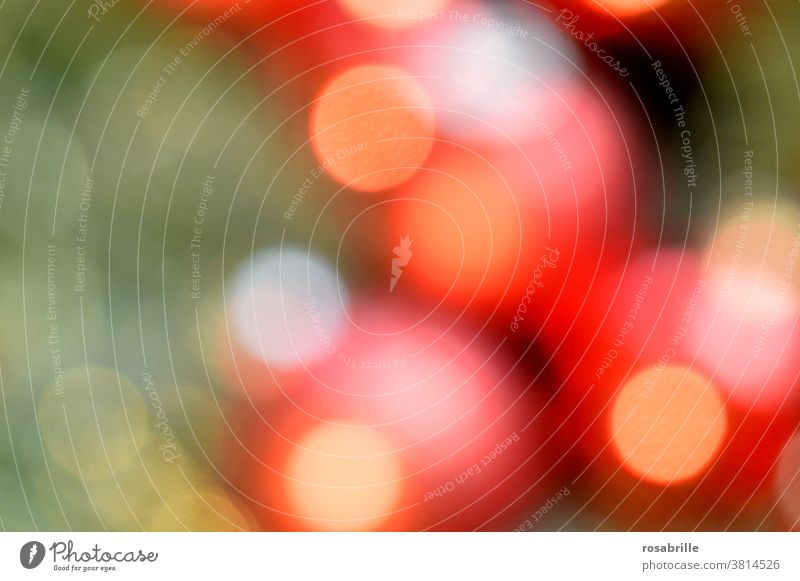colour combination | christmas bokeh in red, green and yellow - red balls on the fir tree with a chain of lights Christmas Abstract Fairy lights Light circles