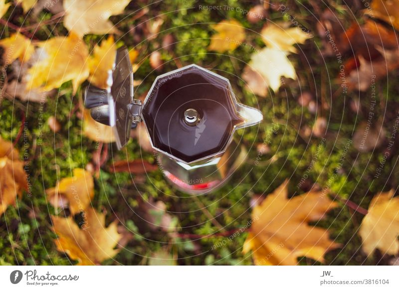 Espresso maker from above. Background: Blurred forest soil with autumn leaves. outdoor bialetti Autumn Close-up Coffee Café Hot drink Coffee break Autumn leaves