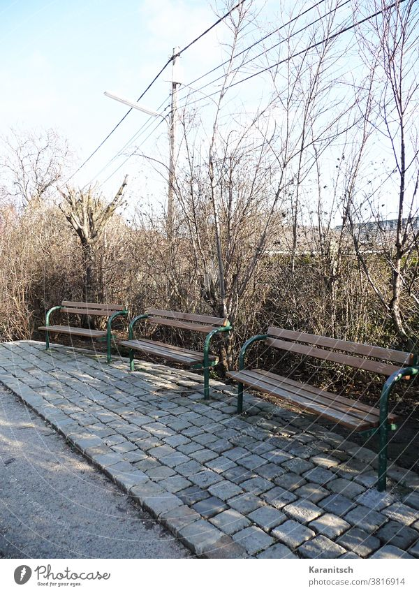 Three park benches in front of bare bushes. Bench Park Park bench Sit rest Resting place tranquillity silent Empty Brown Fence Bushes Winter Spring sunny