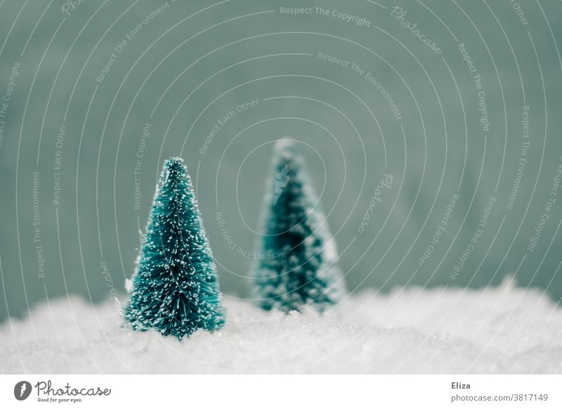 Wintry miniatures of two fir trees in the snow Snow Winter Christmas firs White Cold Forest white christmas Seasons Nature Miniature Artificial phoney snowy