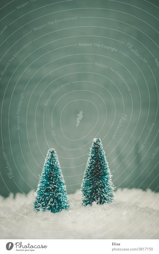 Two fir trees in the snow. Winter and Christmas. Snow winter landscape Tree Cold Seasons Fir tree Blue Snowscape