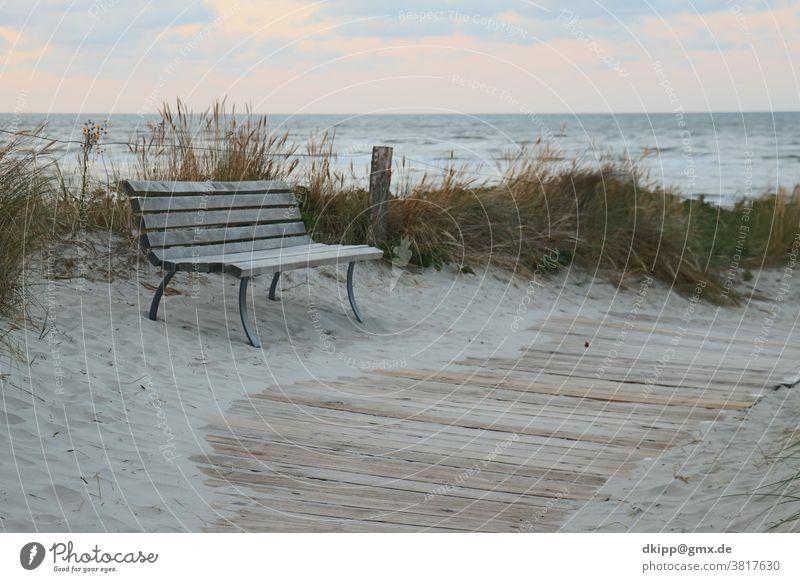 Park bench on the dune off the North Sea Beach duene Beach dune Ocean Bench