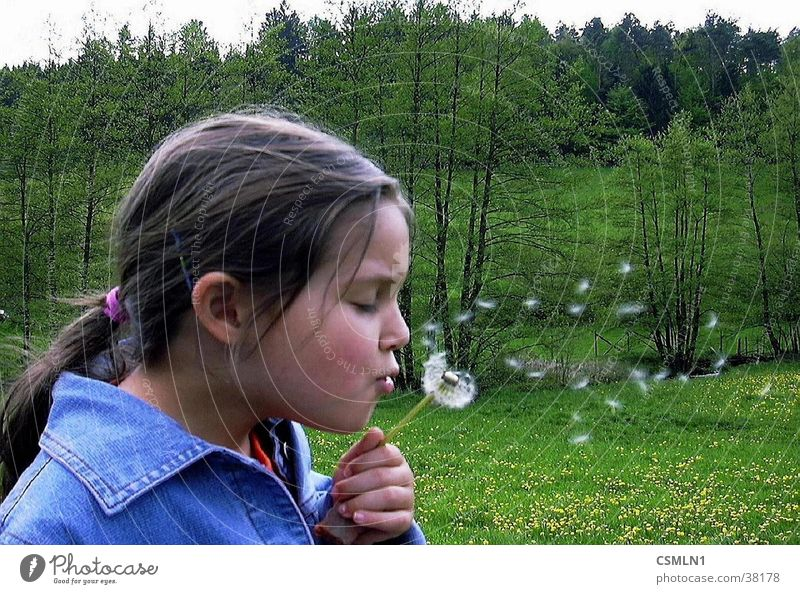 Nature Girl Spring Landscape Dandelion Child