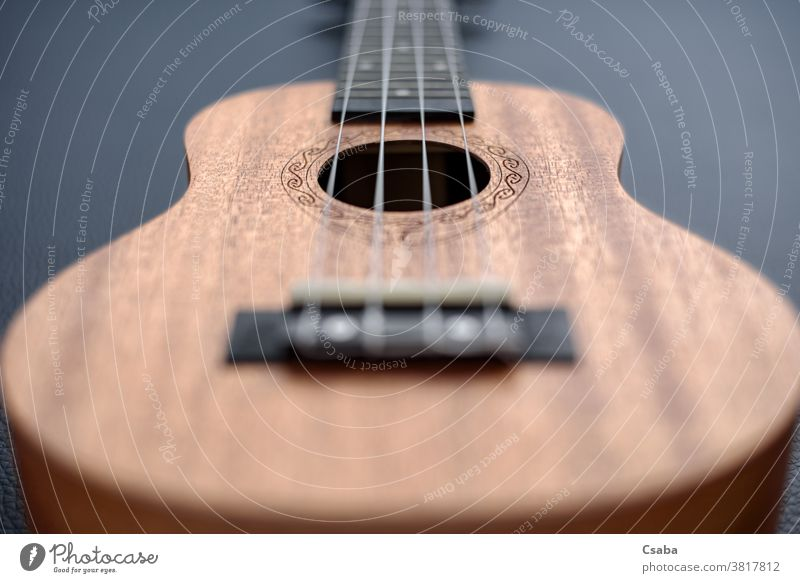 Brown ukulele on black background with shallow depht of field wooden instrument object acoustic musical closeup close up guitar string brown hawaiian rosette