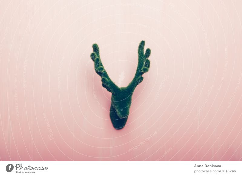 Head of Deer with antlers, Christmas decoration deer reindeer christmas xmas holiday happy season green new year creative concept traditional celebration winter