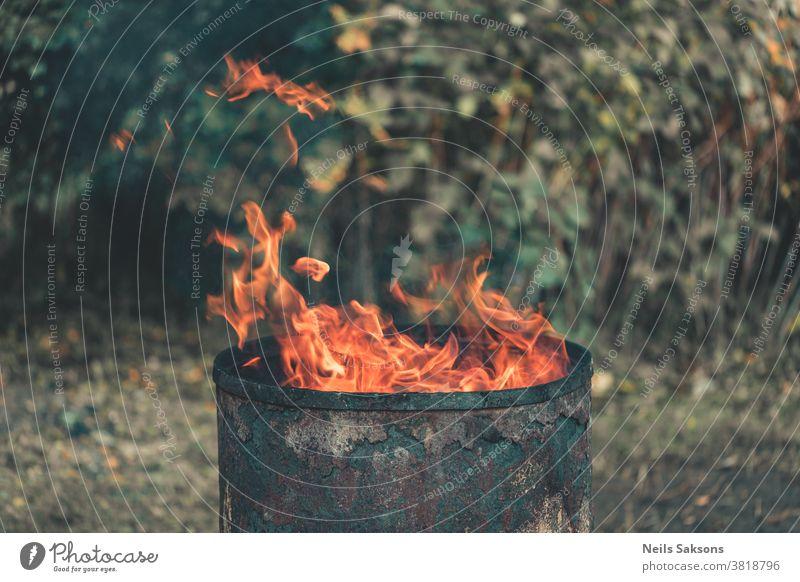 fire in the gardenfireplace made of old metal barrel bin burnt can container danger destruction dump flame trash garbage hazard junk litter pollution safety