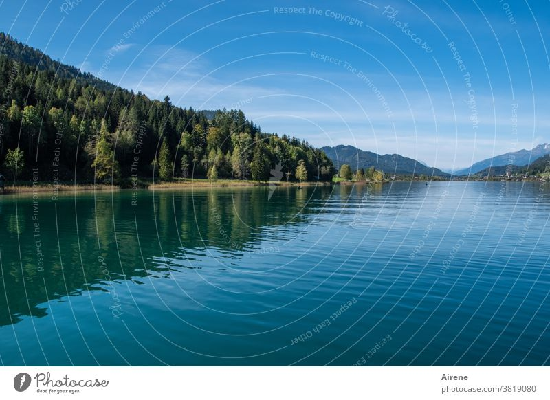 find one's rest Lake Alps Water Calm Contentment Contemplative Idyll Horizon Austria Relaxation Peace Mountain forest Mountain lake water level Water reflection