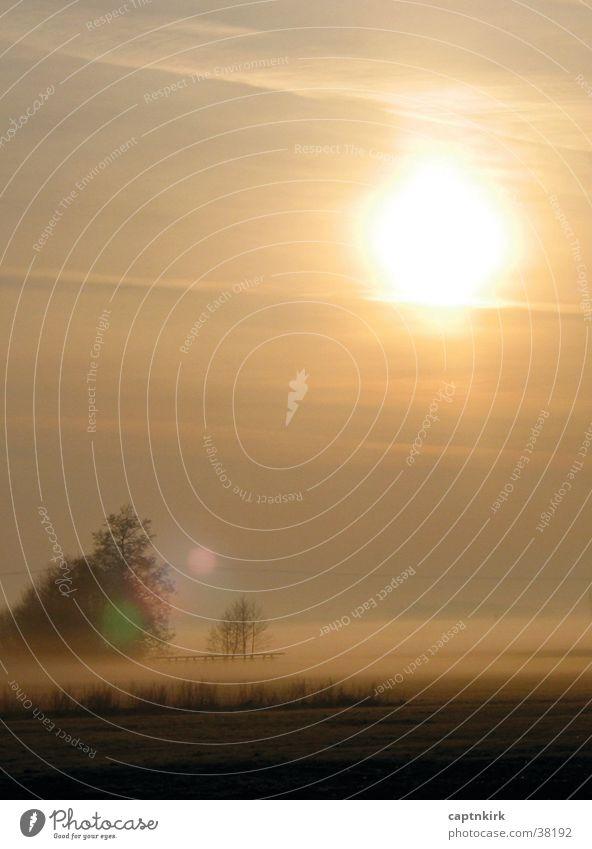 Calm Meadow Fog Footbridge Dew Prayer Morning fog