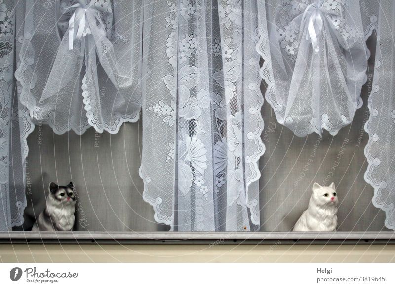 Sentry - two porcelain cats sitting at a window with nostalgic curtains Window Cat Porcelain cat Caravan Decoration Kitsch bits and pieces Curtain Idyll