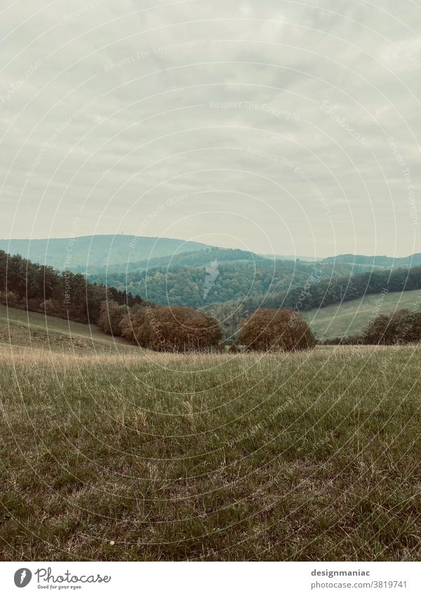 Odenwald Hill Landscape Empty Forest Clearing Green Grass Grassland cloudy Clouds in the sky Horizon mountain landscape void silent clearing Hesse Germany