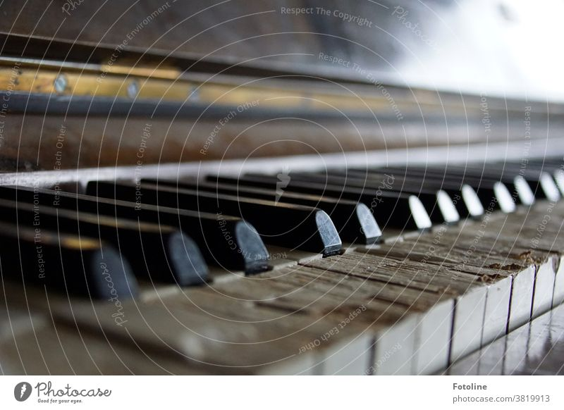 Well, hit the keys! - or an ancient piano that has long left its best days behind but still makes a sound. albeit crooked. Piano fumble Keyboard Music