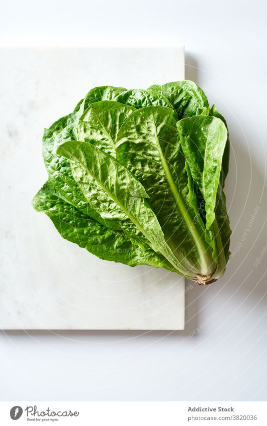 A head of fresh romaine salad food organic ingredient healthy vegetable green natural vegetarian lettuce leaf raw plant agriculture freshness diet nature eating