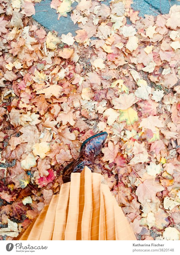 autumn impressions, leather boots and pleated skirt on autumn leaves Bird's-eye view Footwear Exterior shot Day Feet Legs Colour photo Floor covering Red Stand