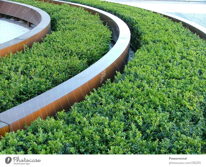 grass grows like on rails Railroad tracks Grass Architecture Flowerbed Bertlelsmann Entrance